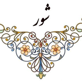 دستگاه شور ٬ آموزشگاه موسیقی ٬ کلاس آموزش خوانندگی ٬ آموزشگاه موسیقی شمال تهران