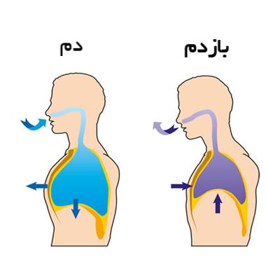 تمرینات تنفسی ٬ آموزشگاه خوانندگی تهران ٬ کلاس موسیقی ٬ آموزشگاه موسیقی تهران