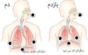 تنفس صحیح ٬ آموزشگاه خوانندگی ٬ آموزشگاه موسیقی ٬ آموزشگاه موسیقی شمال تهران